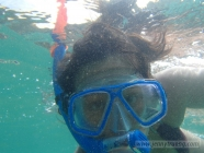 Snorkeling at Waimea Beach