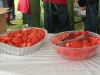 2014 Wilmot Orchard Breakfast Tomatoes